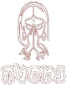 נמסטה לוגו